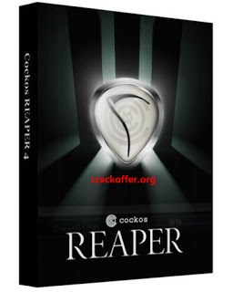 Cockos REAPER 6.02 Crack Plus Licence Key Free Download 2020